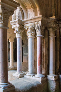 Marble Columns of Fontfroide Cloister by Louise Heusinkveld