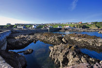 St-abbs-harbour3708