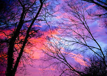 Morning Sky von Joanna Kapica