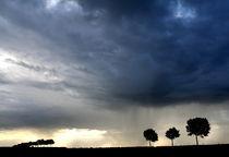 Unwetter am Niederrhein von Torsten Reuschling