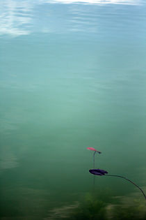 Wandbild by Jens Berger