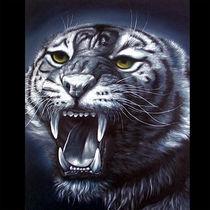 blue-tiger by Nilgün Gedik