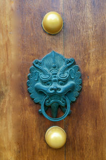 Dragon Gate Door Handle  von pixinity