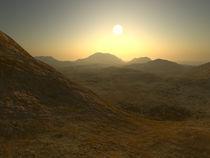 The Desert von Lucy Allen