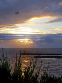 Sunsets of California - Newport Beach by Eye in Hand Gallery