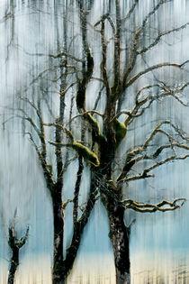 schönes Wandbild von Jens Berger