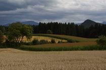 Sommerfelder by Bryan Bennett