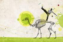 Fallin-camel