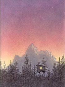 Evening-in-the-treehouse