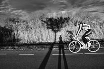 Cyclist and tree and shadow and me by Mabel Amber