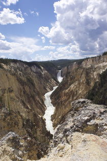 Yellowstone Canyon by Mario Kobayashi