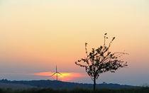 Sun goes down. von Wolfgang Dufner