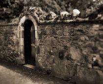 Black Door, Stone Wall by Tamas Katai