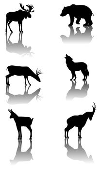 Set of mountain animals by William Rossin