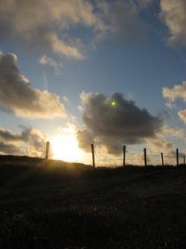 Sunset 12 von Evan John