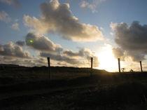 Sunset 11 von Evan John