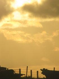 Sunset 05 von Evan John