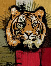 Tiger by Montgomery Q