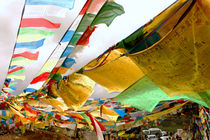 Tibetan Religious flags by Pang Ren Tan