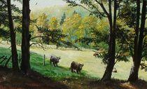 On pasture / Auf der Weide by Apostolescu  Sorin
