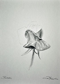 Balletto von robert-zink