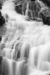 Fern Falls Detail by Colorado Images