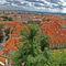 View-from-prague-panoramaedit