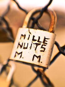 Love lockers in Paris by mac-mik