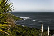 Die Wellen von Raglan auf Neuseeland von Andy Fox