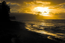 Sonnenuntergang am North Shore von Hawaii by Andy Fox