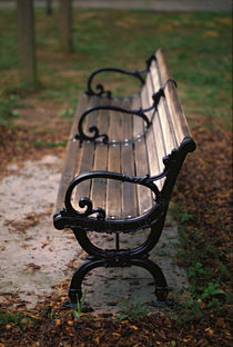Park Bench, Atlanta by Greg Wright