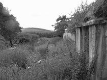 Irish Cottage 02 by Evan John