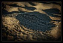 Sandy by Alexandru Busuioc