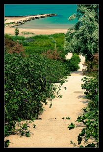 Road towards the sea by Alexandru Busuioc