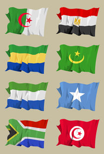 Eight-african-flags