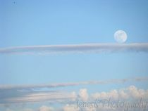 The-setting-moon-by-jenesisphotography