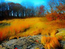 Ocea froh ih Westchester. NY USA by Maks Erlikh