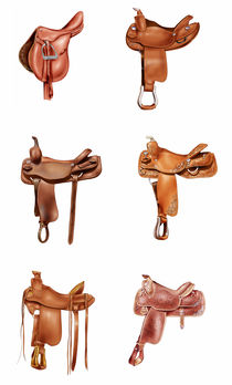 Six saddles by William Rossin