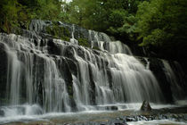 Purakaunui Falls by Thomas Klomp