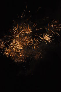 Fireworks-117
