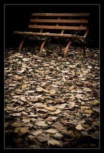 Silence by Alexandru Busuioc