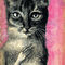 Pink-cat