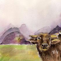Purple Buffalo von Kuizin studio