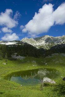 Little lake by Ivan Coric