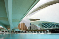 Valencia, Palau de les Arts 2 by Frank Rother