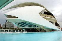 Valencia, Palau de les Arts 1 by Frank Rother