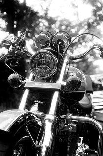 Harley Davidson Sportster 1100 von Erick Sulaiman