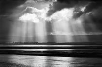Sunlight Over Berrow Flats, Somerset by Craig Joiner
