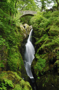 Aira Force Waterfall, Cumbria von Craig Joiner