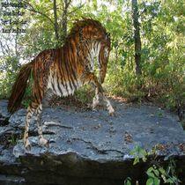 The TigerHorse by dragonmistress